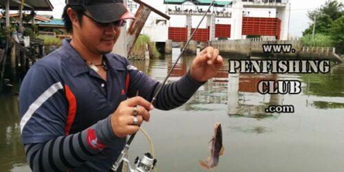เบ็ดตกปลาราคาถูก